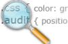 css audit